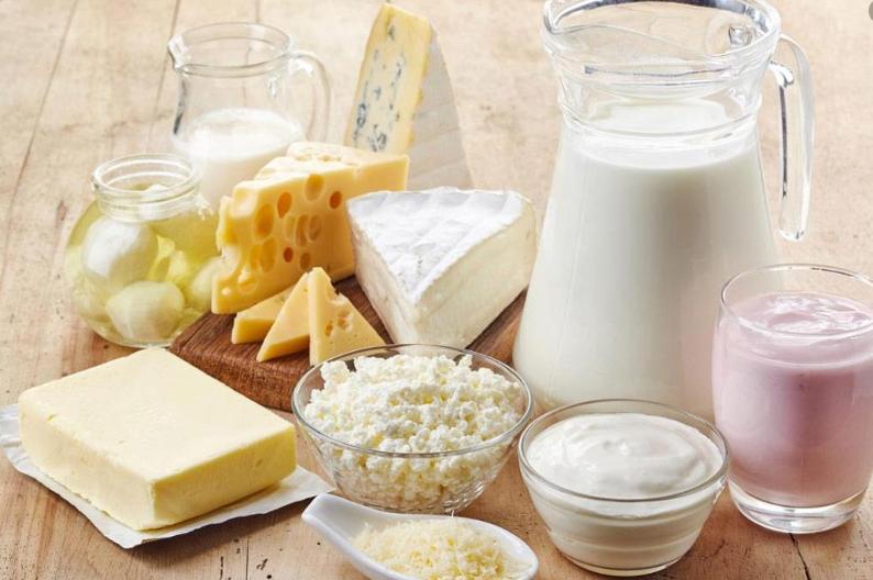 دراسة جدوي مشروع انتاج الجبن اليا