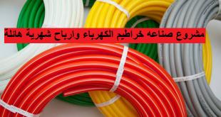 مشروع صناعه حراطيم الكهرباء